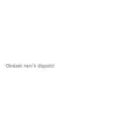Dres OXDOG MOOD SHIRT senior black/white